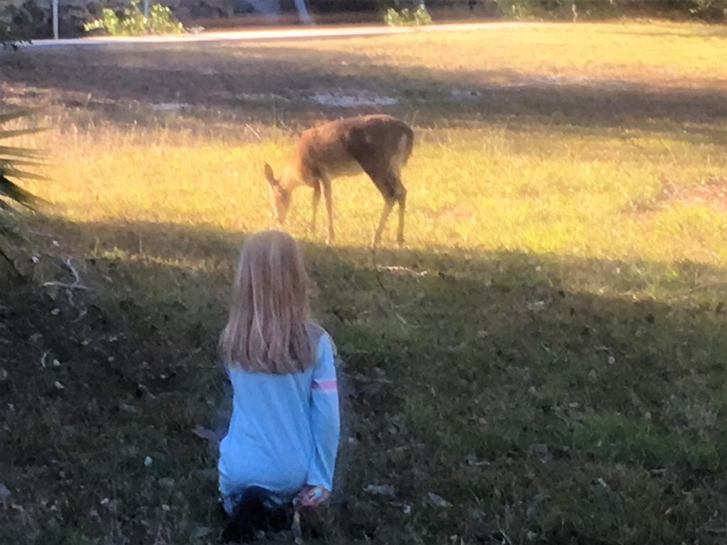 Ava talking to the deer